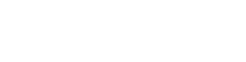IMBeR Logo White